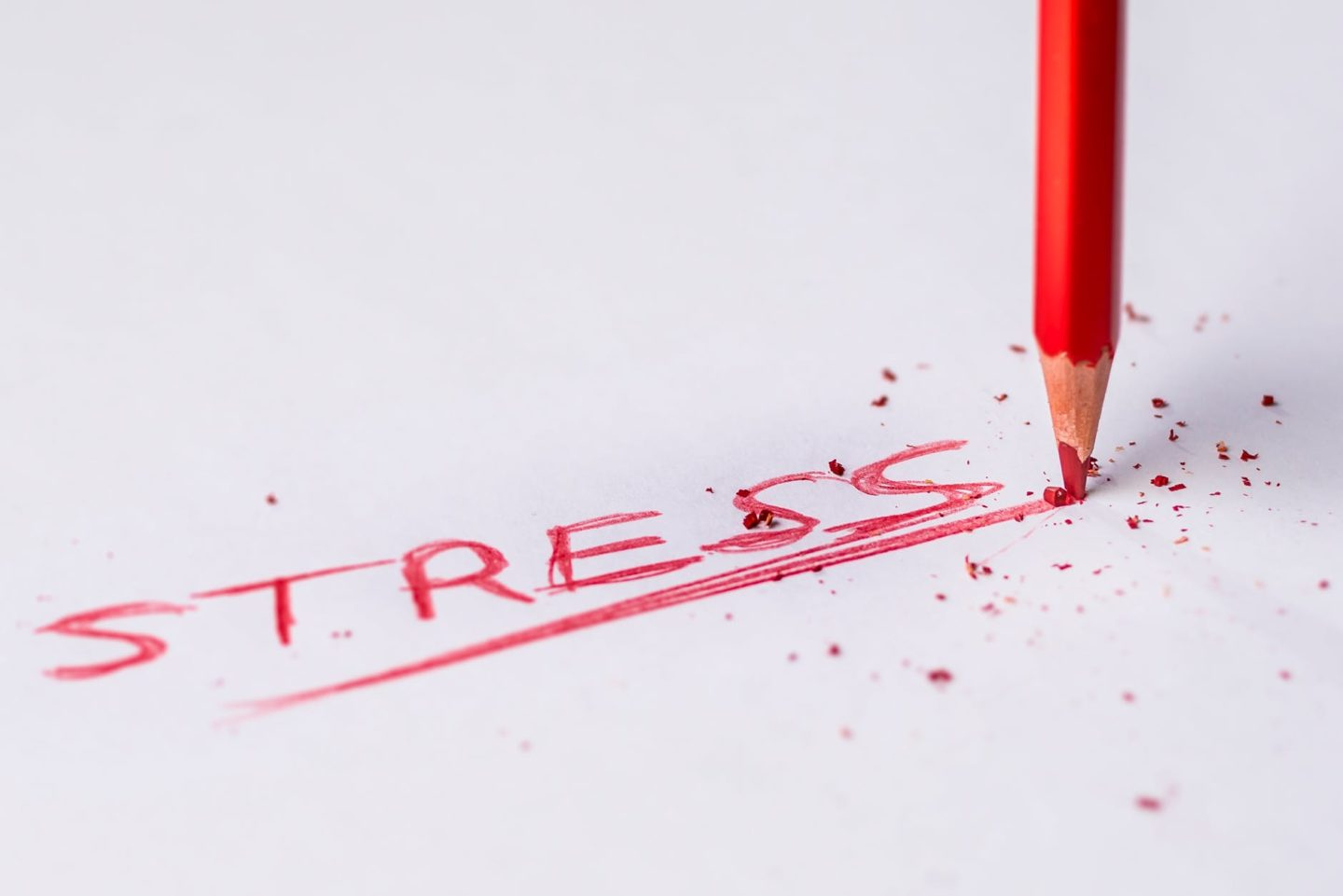Are You Doing Enough To Maintain A Stress-Free Existence?
